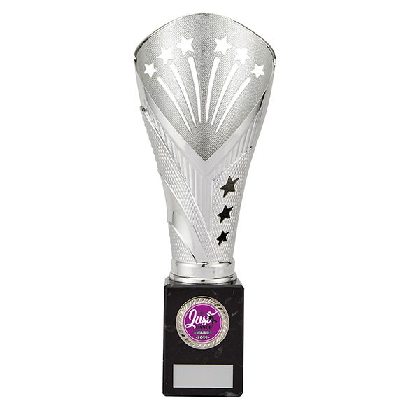All Stars Large Rapid Trophy Silver 260mm