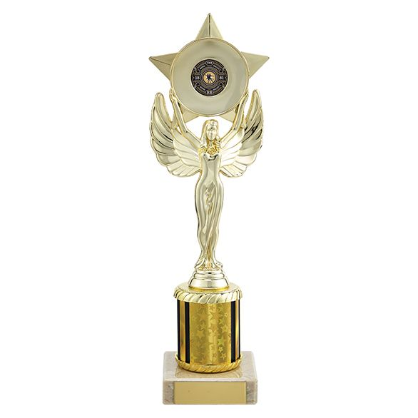 Unity Victory Multi-Sport Trophy Gold 265mm